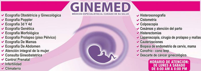 Ginemed S.A.C.