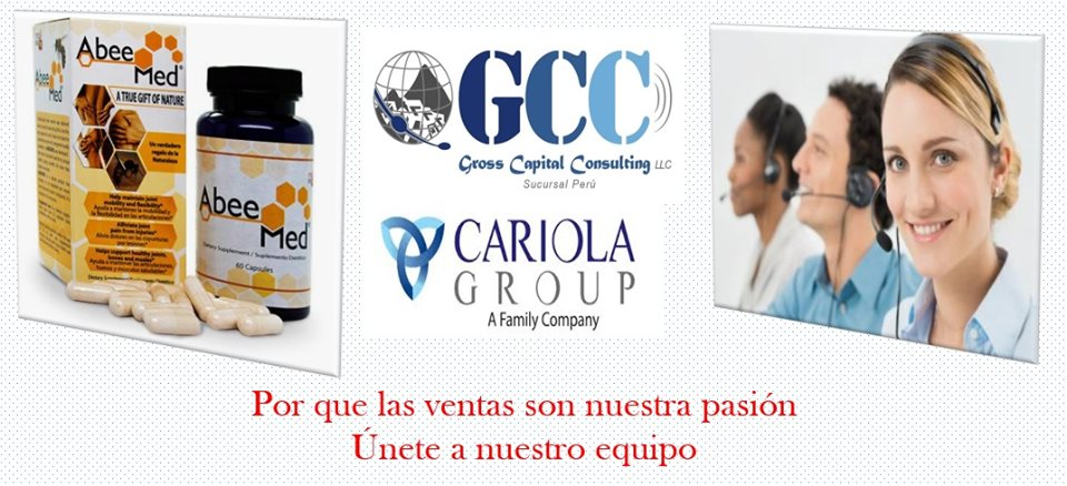Gross Capital Consulting By Cariola Group - Imagen 2 - Visitanos!