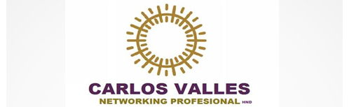 Carlos Valles Networking Profesional
