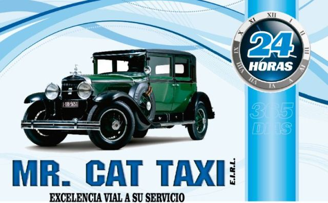 Mister Cat Taxi