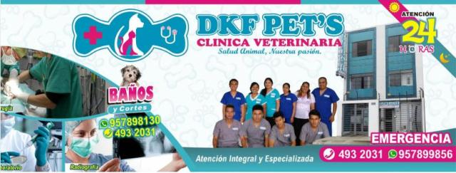 Dkf Pet´S Clinica Veterinaria