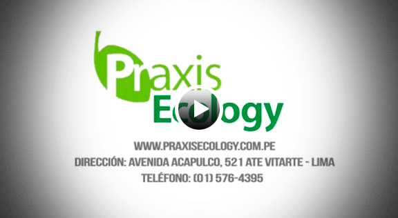 Praxis Ecology S.A.C.