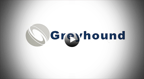 Greyhound Aduanas