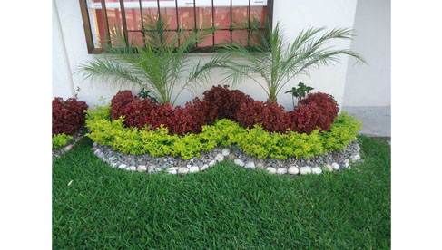 Jardines Real Maexin