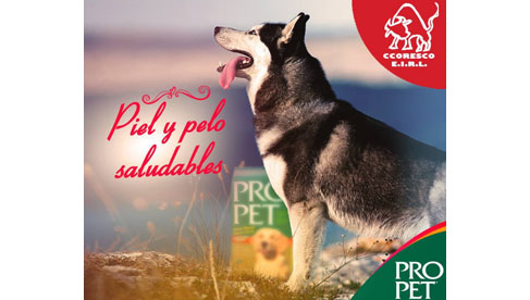 Distribuidora Ccoresco E.I.R.L. - Pro Pet Cusco