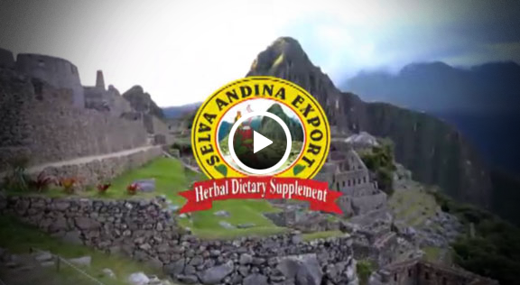 Selva Andina Export - Video 1 - Visitanos!